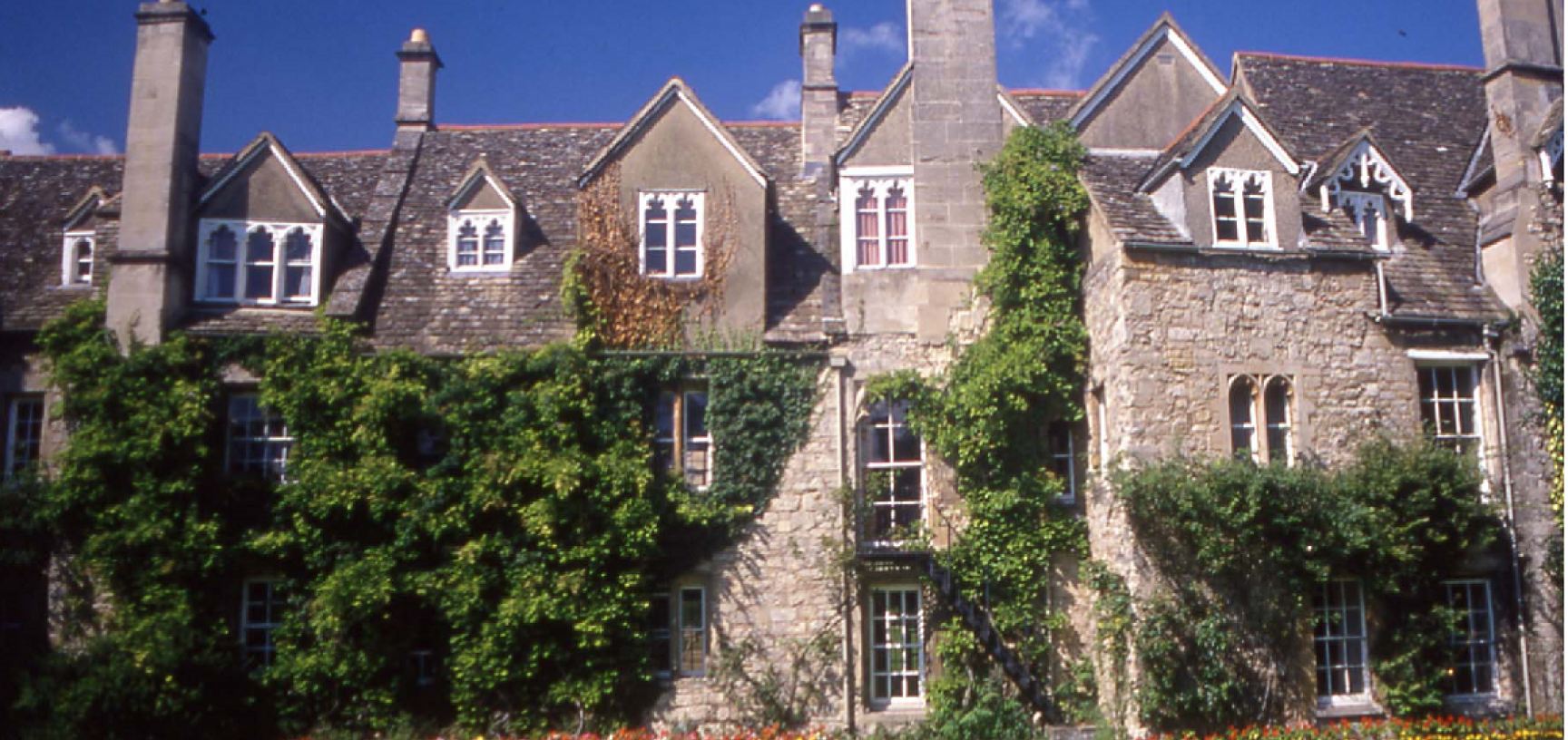 back of the cottages